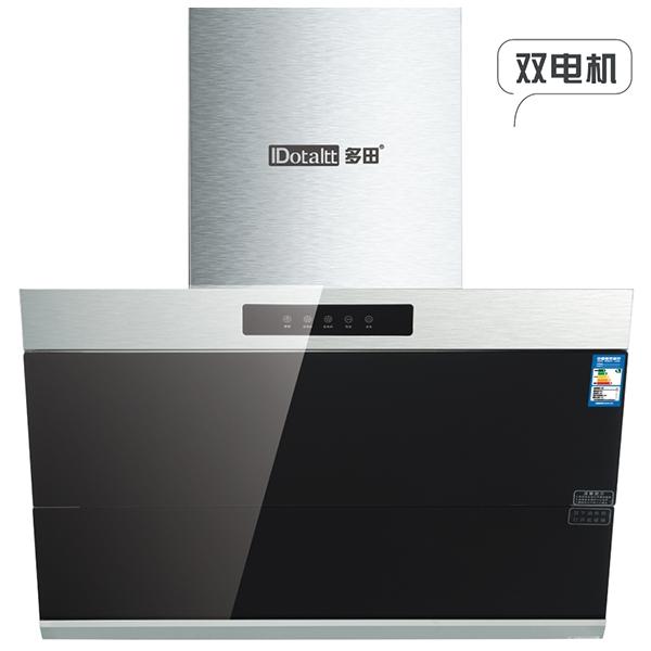 CXW-230-DT866